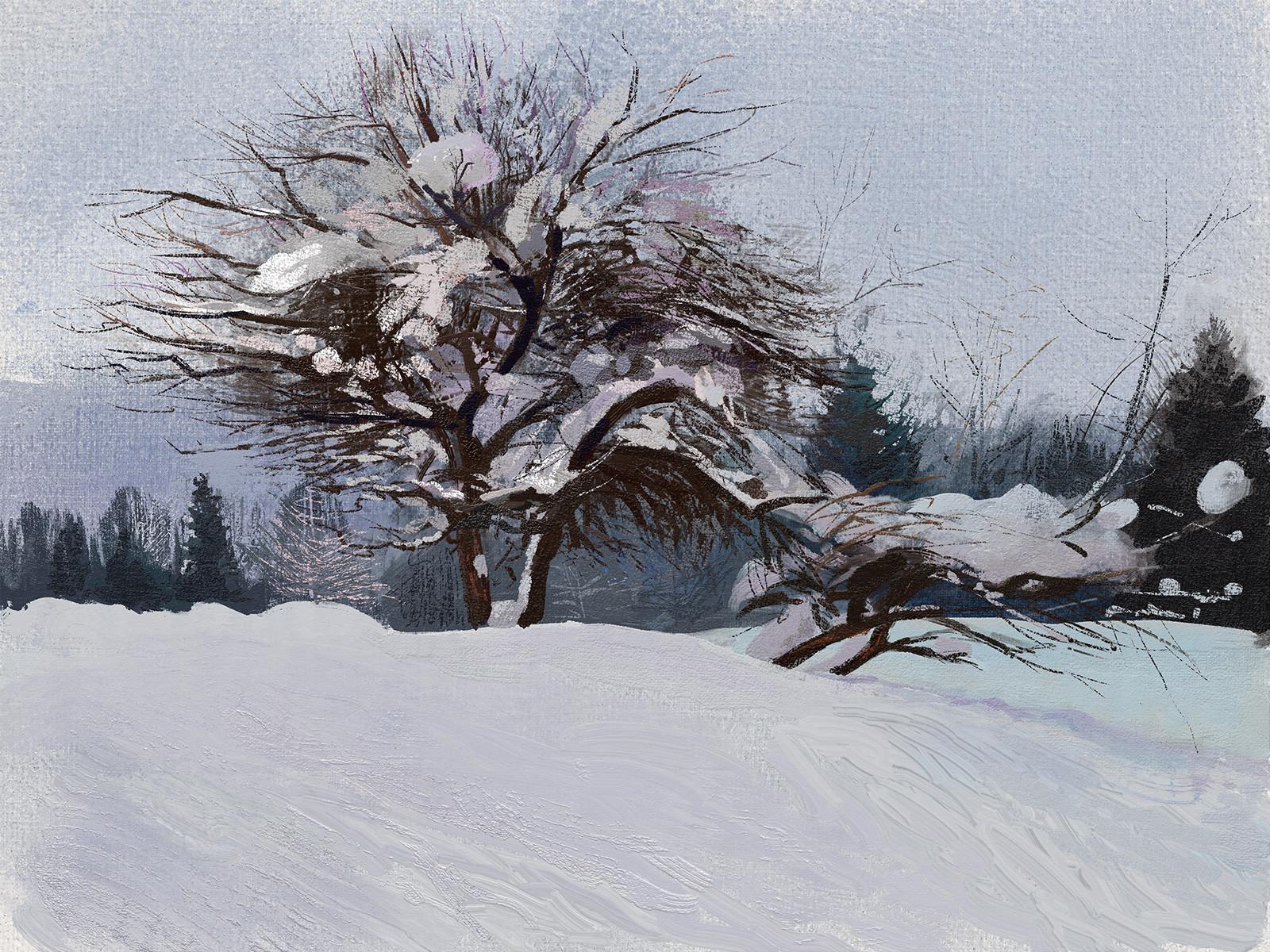 Tymoteusz chliszcz winter by chliszcz
