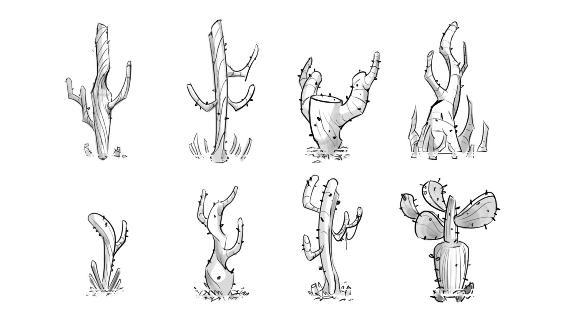 Sandra grunberg sphere cactus