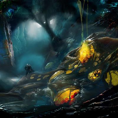 Pradal aurele enter the cave 2