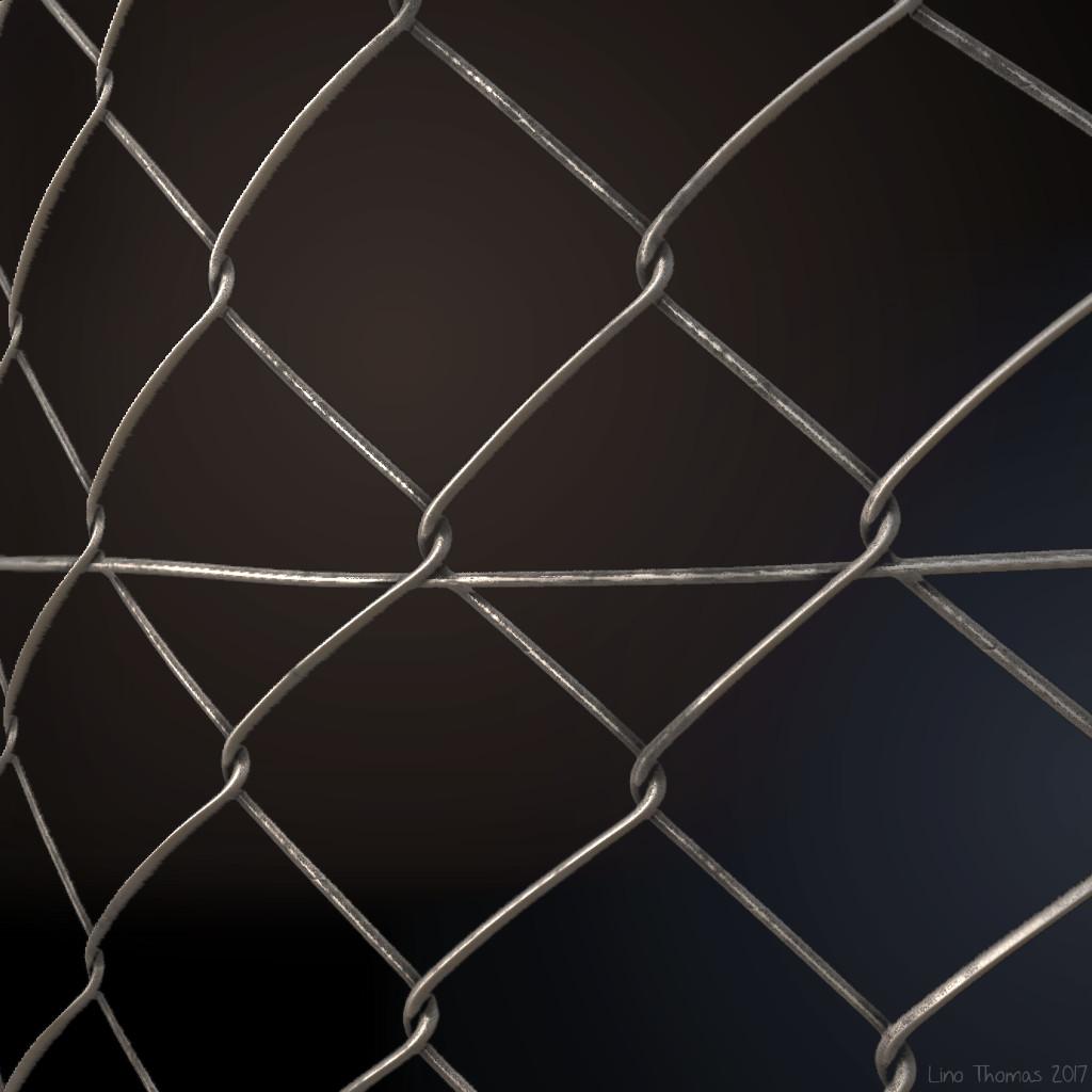 Lino Thomas - Wire mesh fence