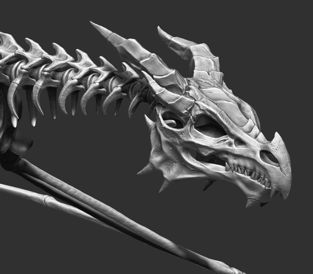 Ricardo graham bonedragon final skull