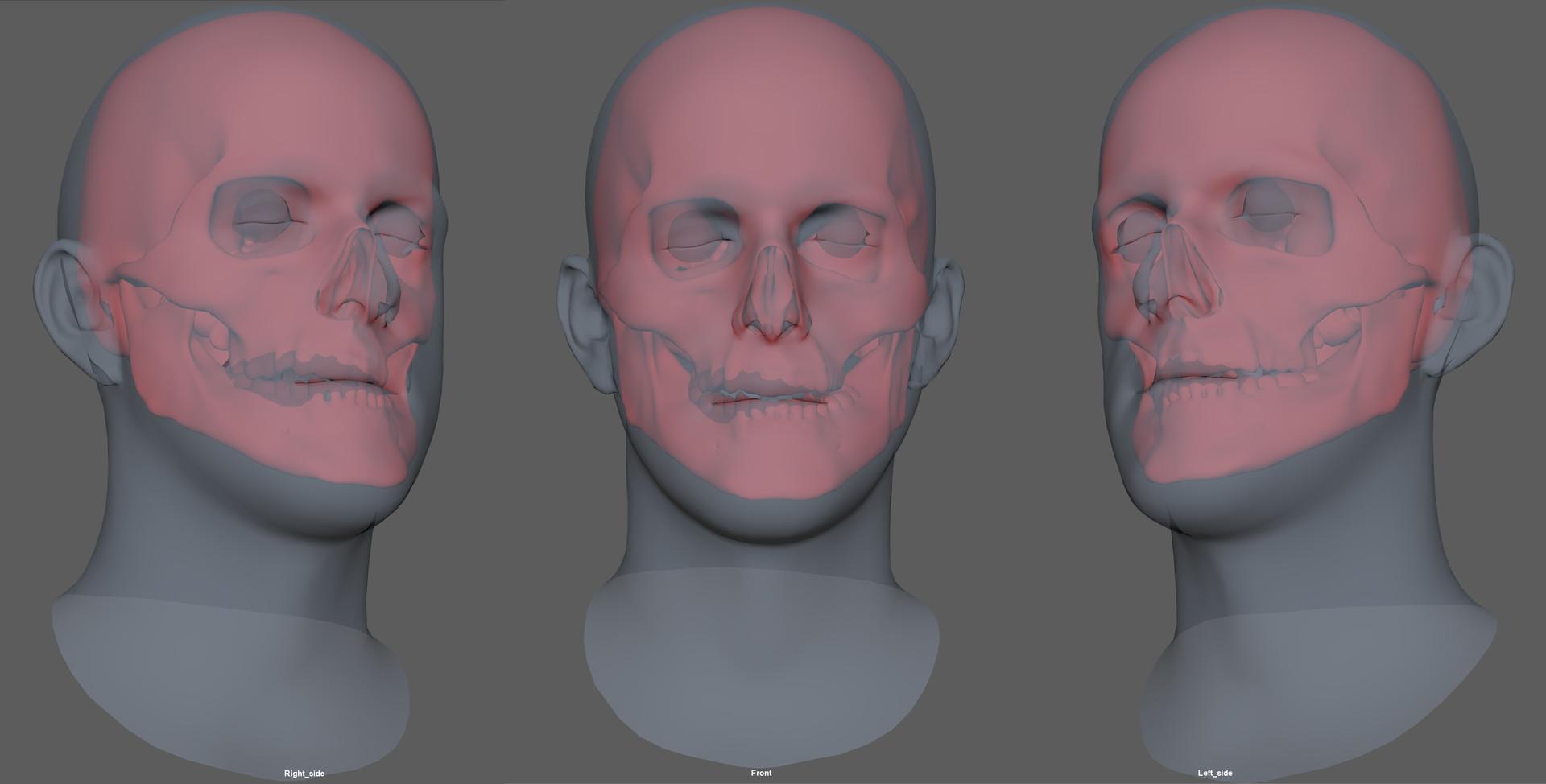 Florian croquet skulls
