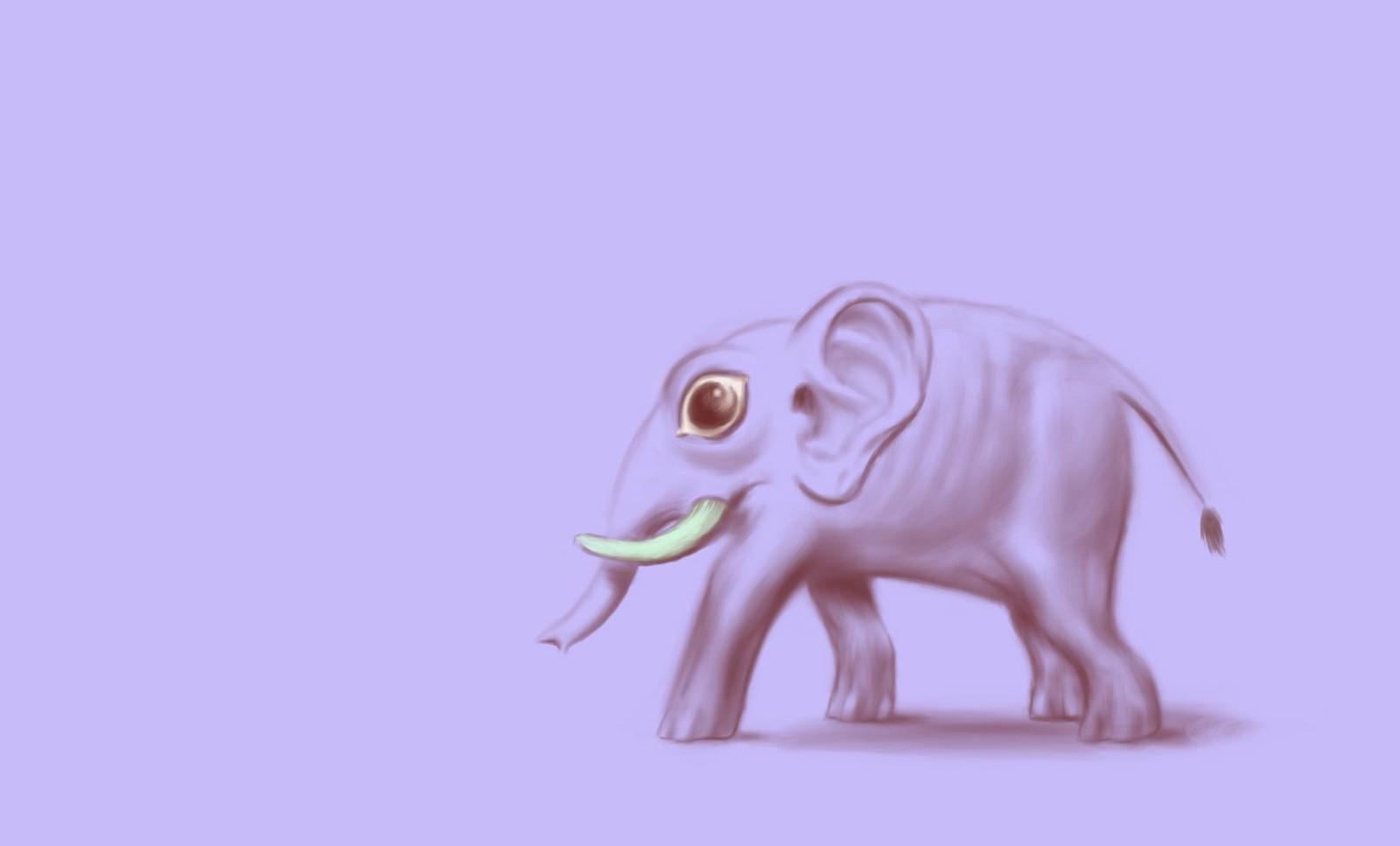 An attentive elephant