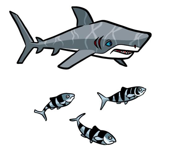 Steve rampton shark