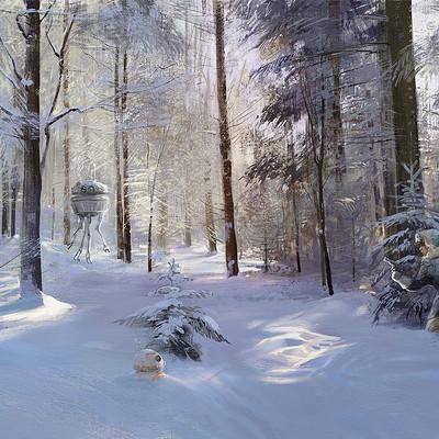 Tymoteusz chliszcz starwars winter by chliszcz