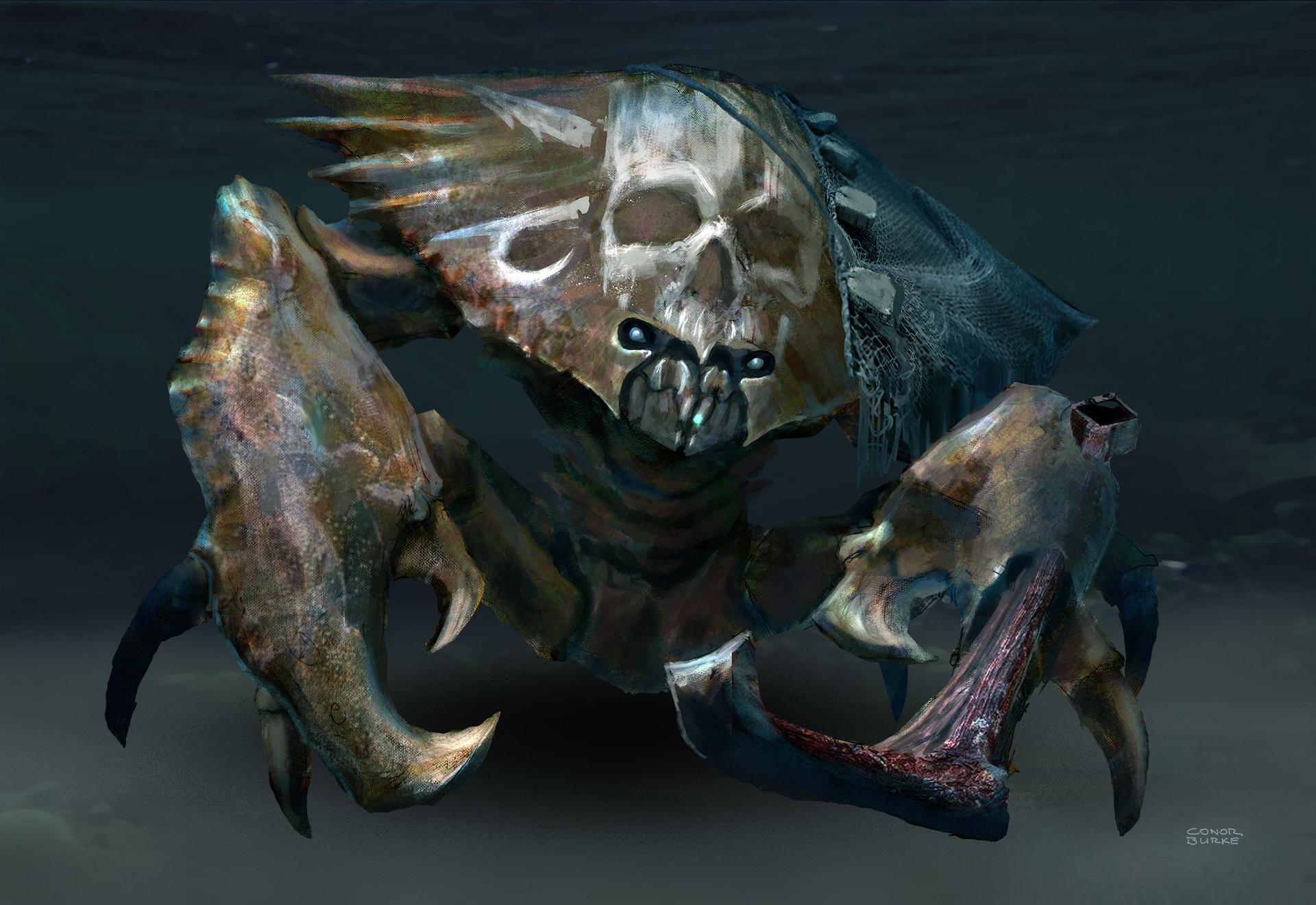 Conor burke conor burke btw pirate crab