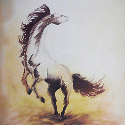 Rajesh r sawant horse color