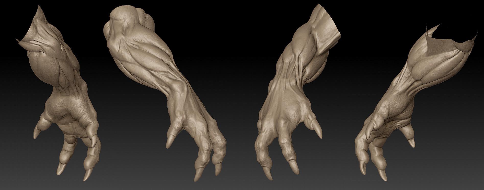 Tinko wiezorrek hands