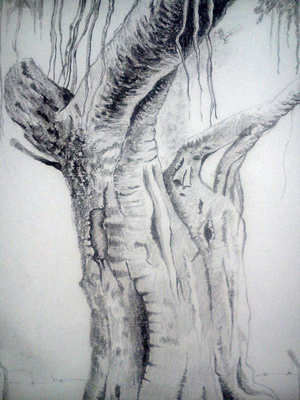 Rajesh r sawant tree clsup