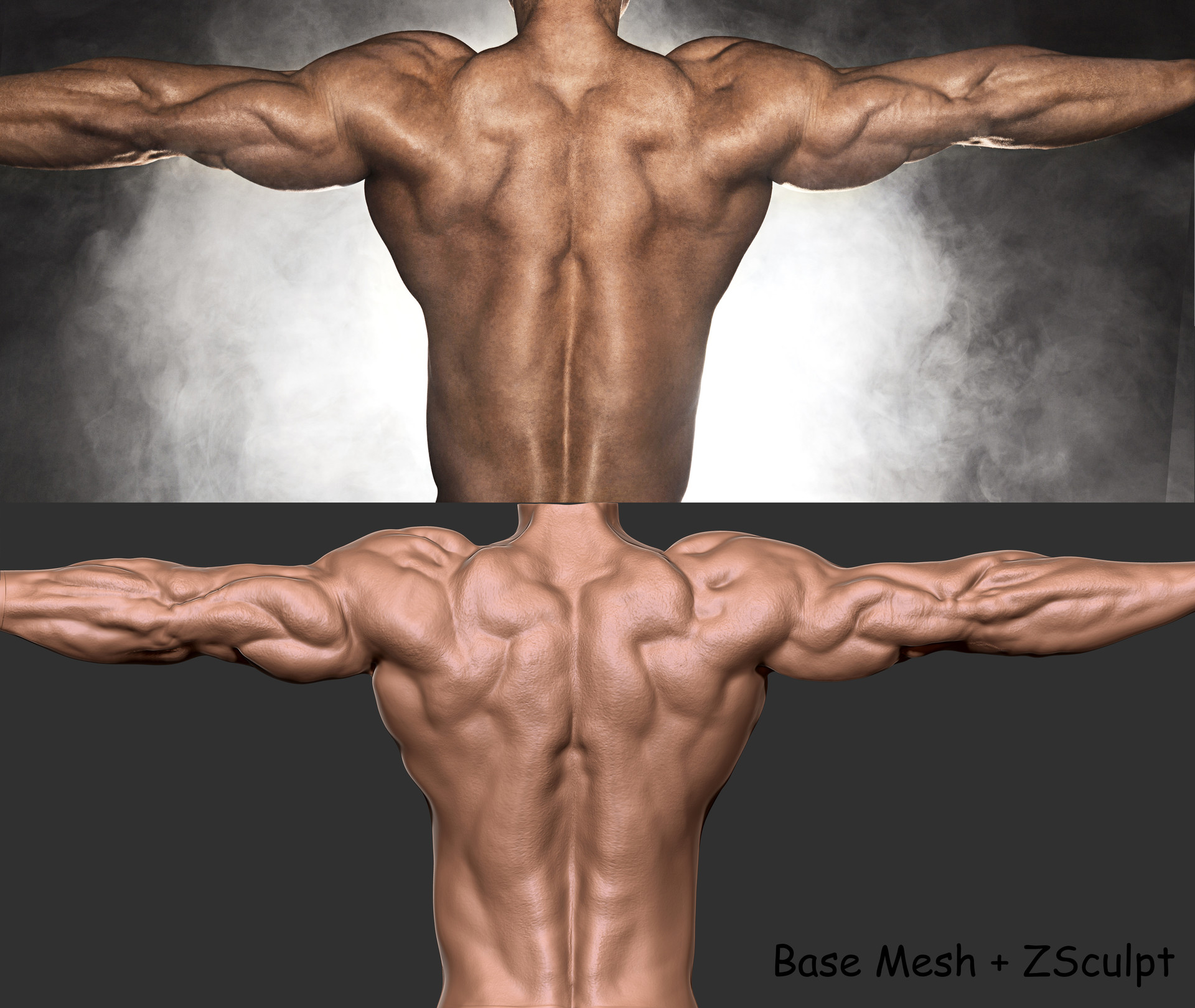 Shiv Swain Back Muscles Anatomy 01