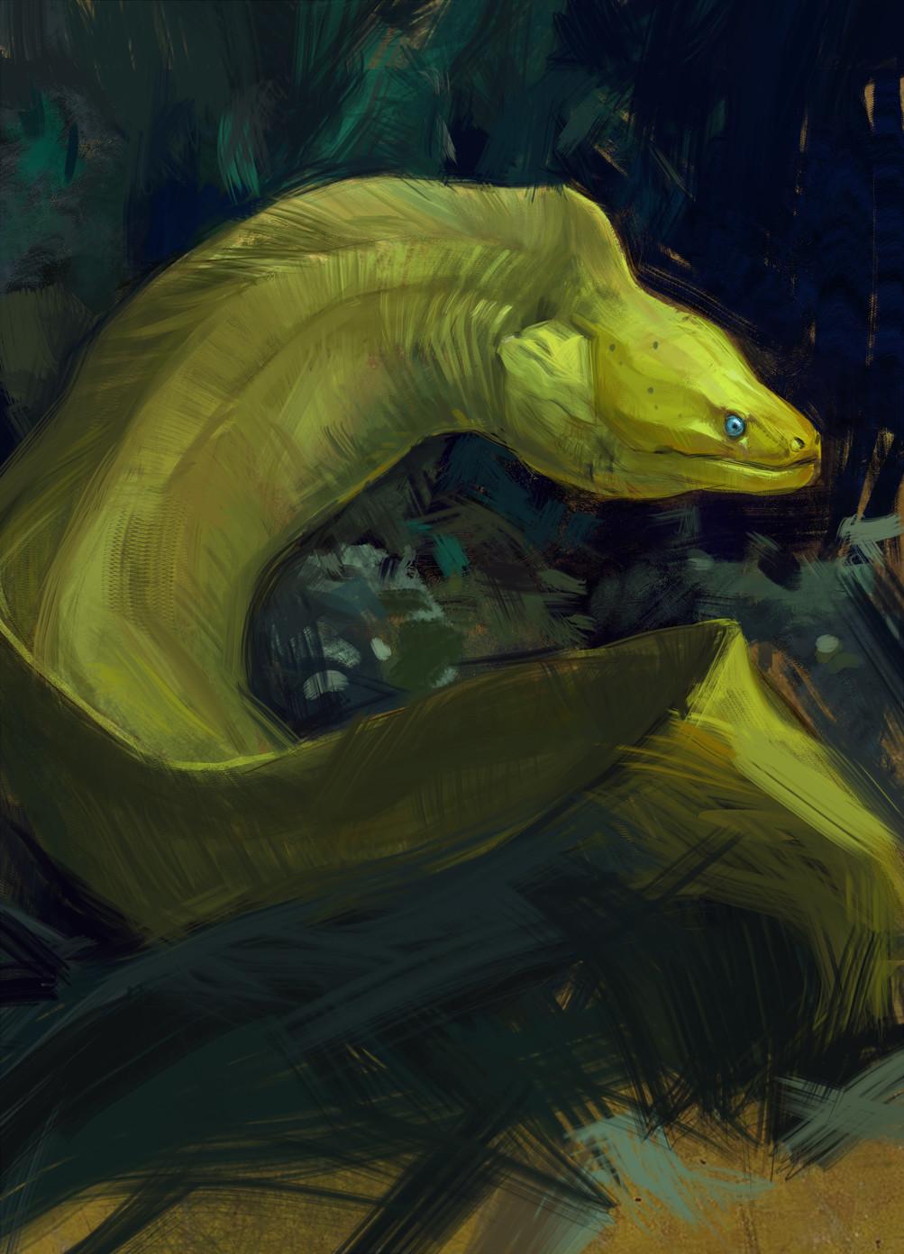 Jon kuo eel low