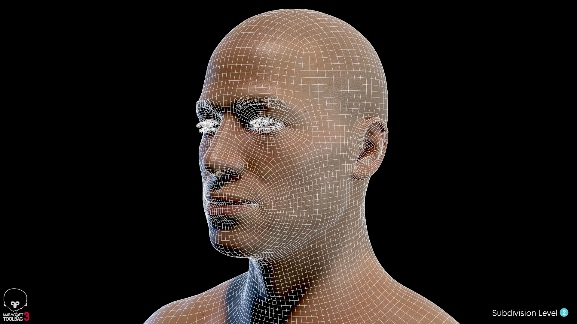 Alex lashko averagemalebody by alexlashko wireframe 08
