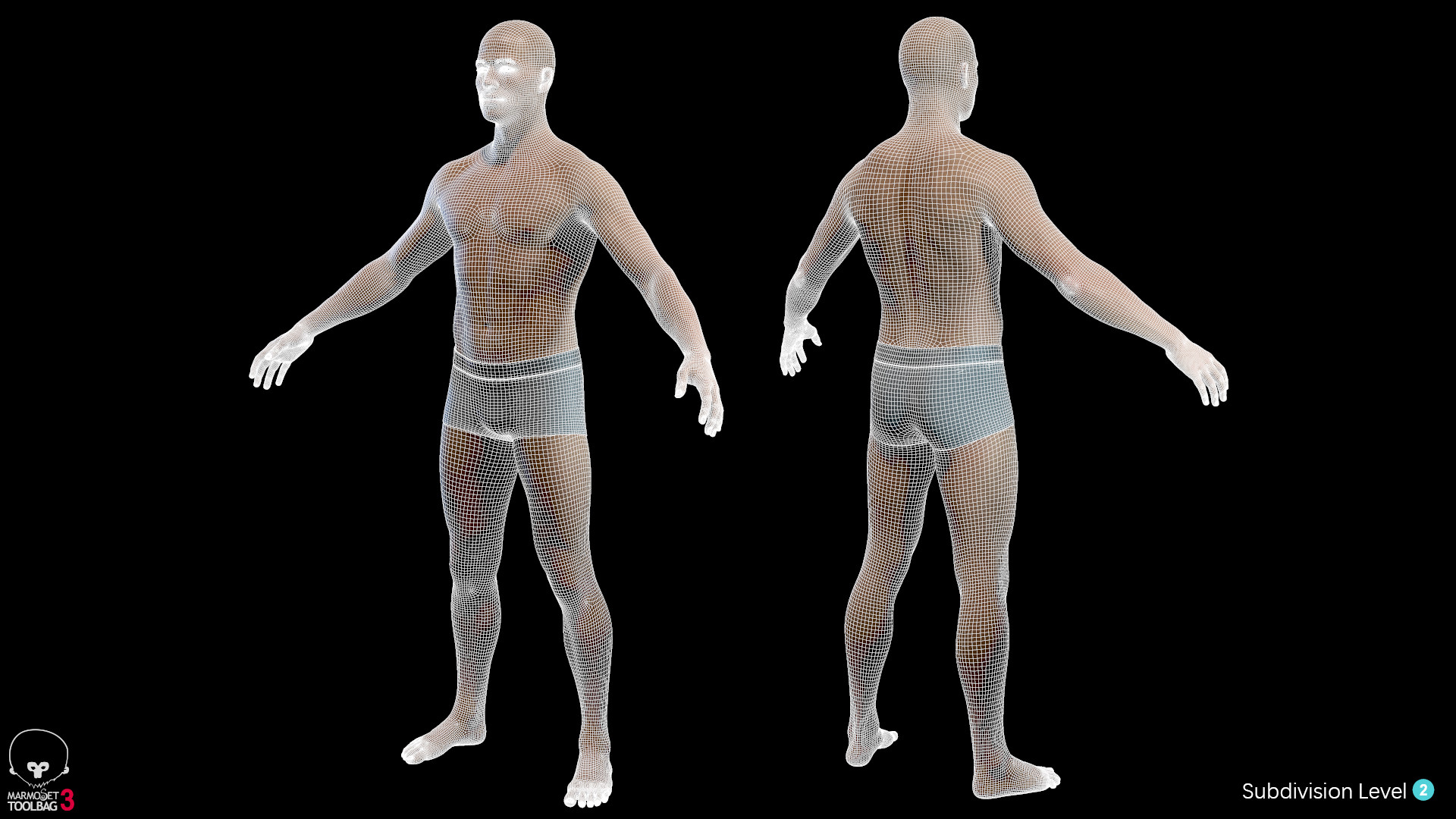 Alex lashko averagemalebody by alexlashko wireframe 09