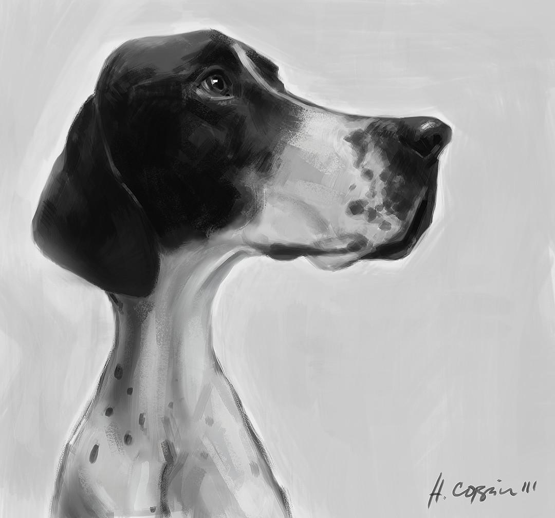 Honorato corpin iii week1 dog hciii low res