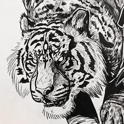 Anais jancenelle tiger