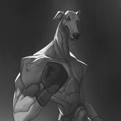 Olabukoo yu greyhound boxer