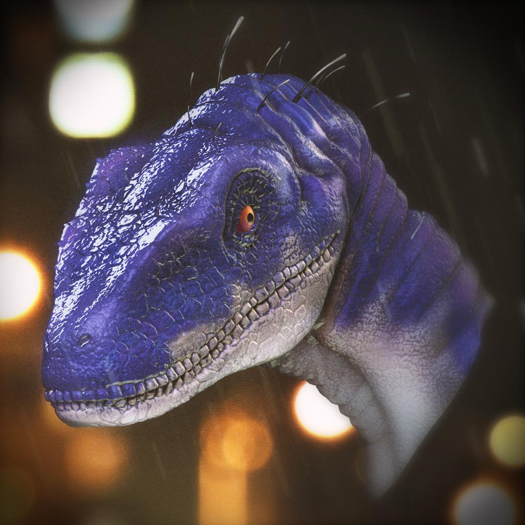 Raptor Doodle