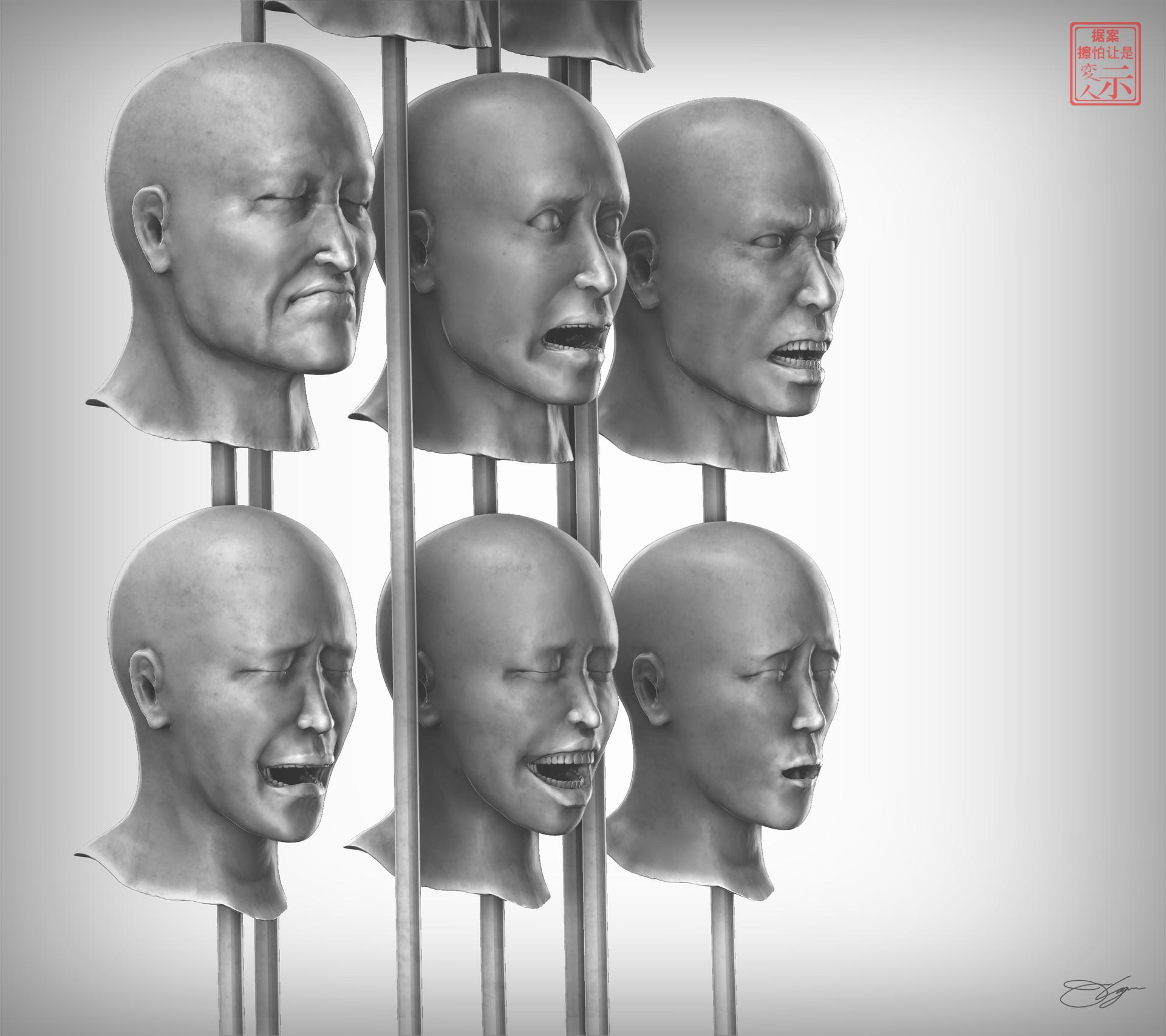 Human Head & Facial Expressions Study