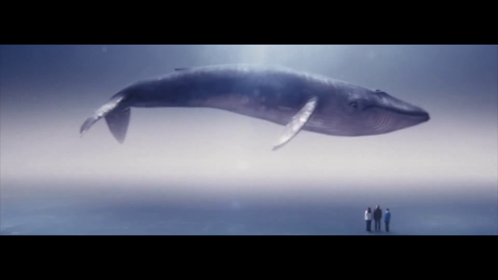 Frame for the open university advert a world of inspired learning showing the Blue whale