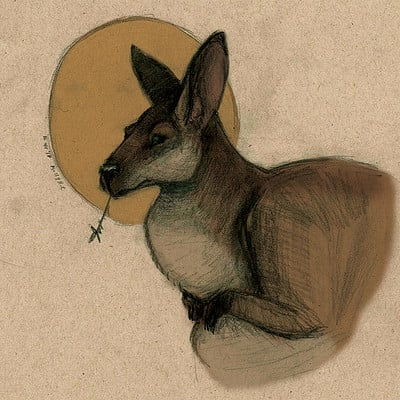 Molly heady carroll wallaby