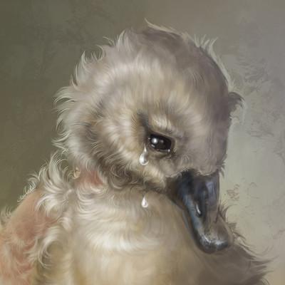 Aleksandra klepacka duckling final 04 01