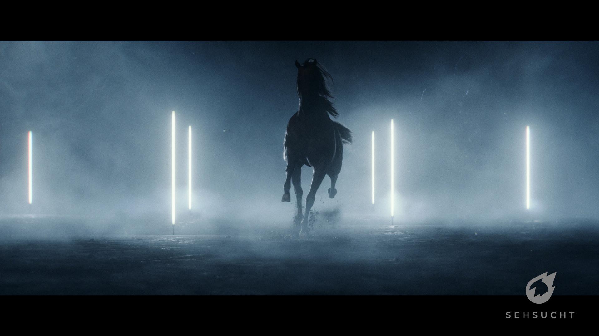 Thure koch horse 547