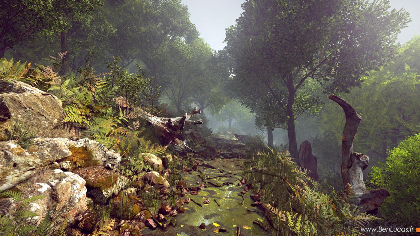 Benjamin lucas unity forest scene resized
