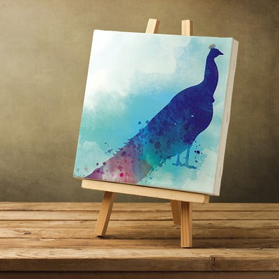 Rajesh r sawant blank canvas peacock
