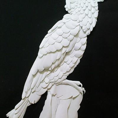 Rajesh r sawant parrot