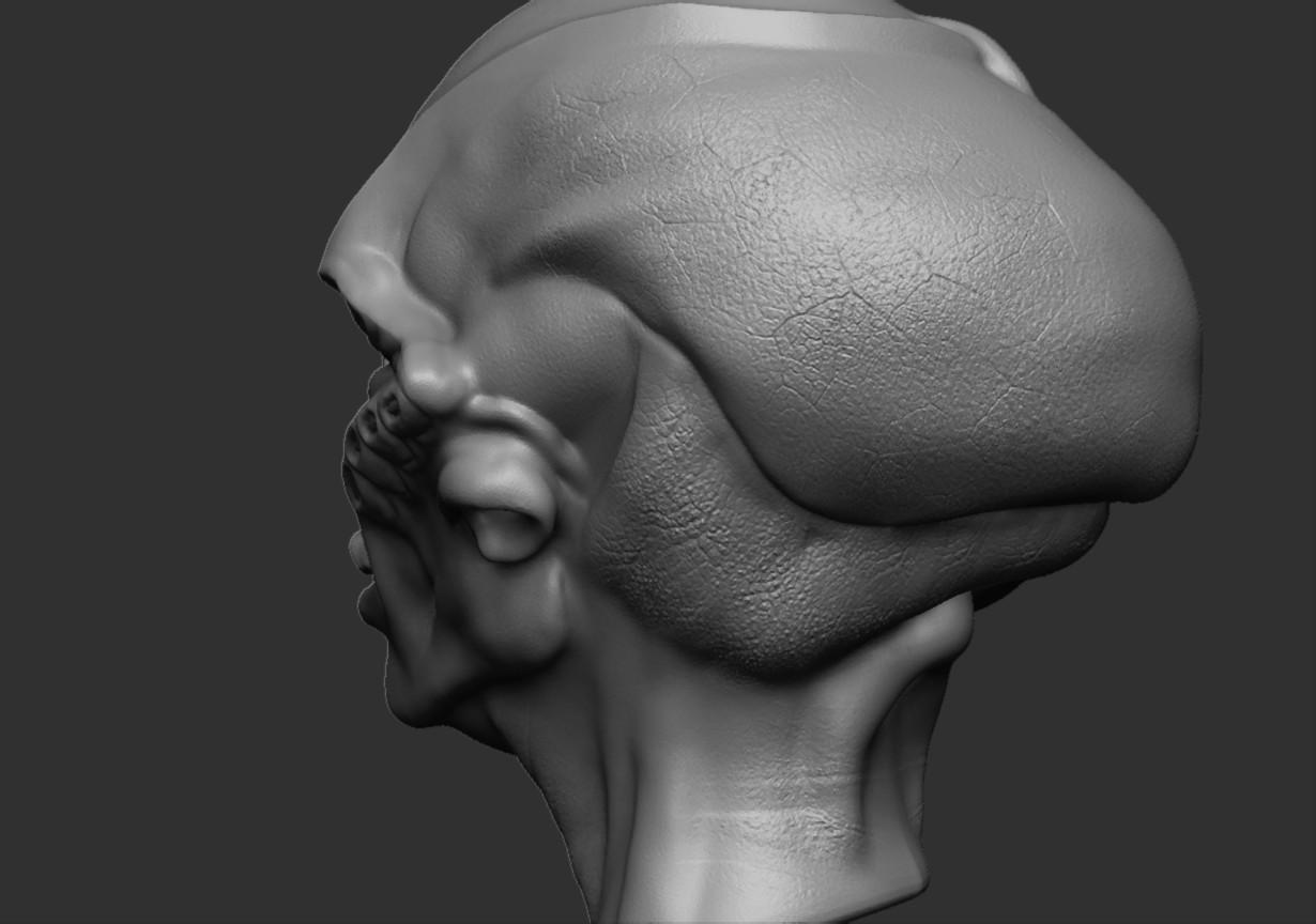 Tolu abisola alien head2 zbrush