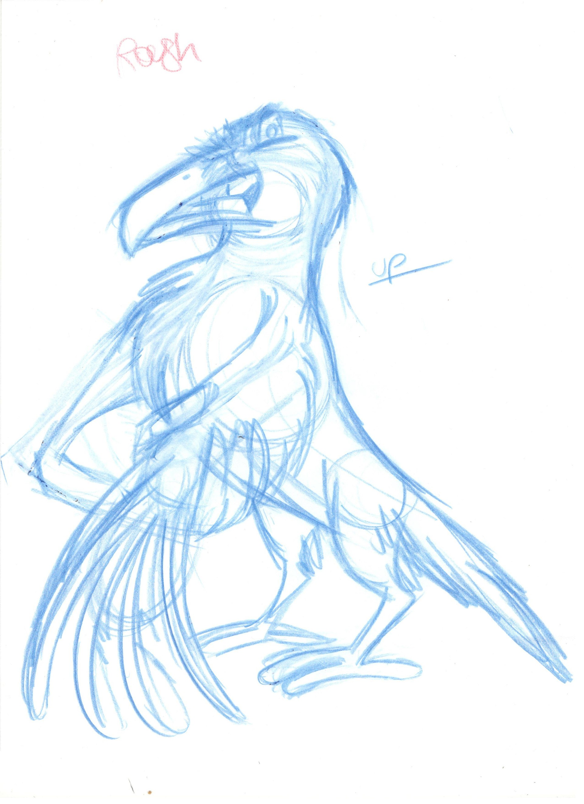 Rough drawing of a raven