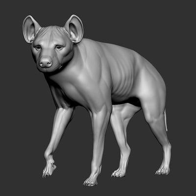 Dimax esteban araujo hiena