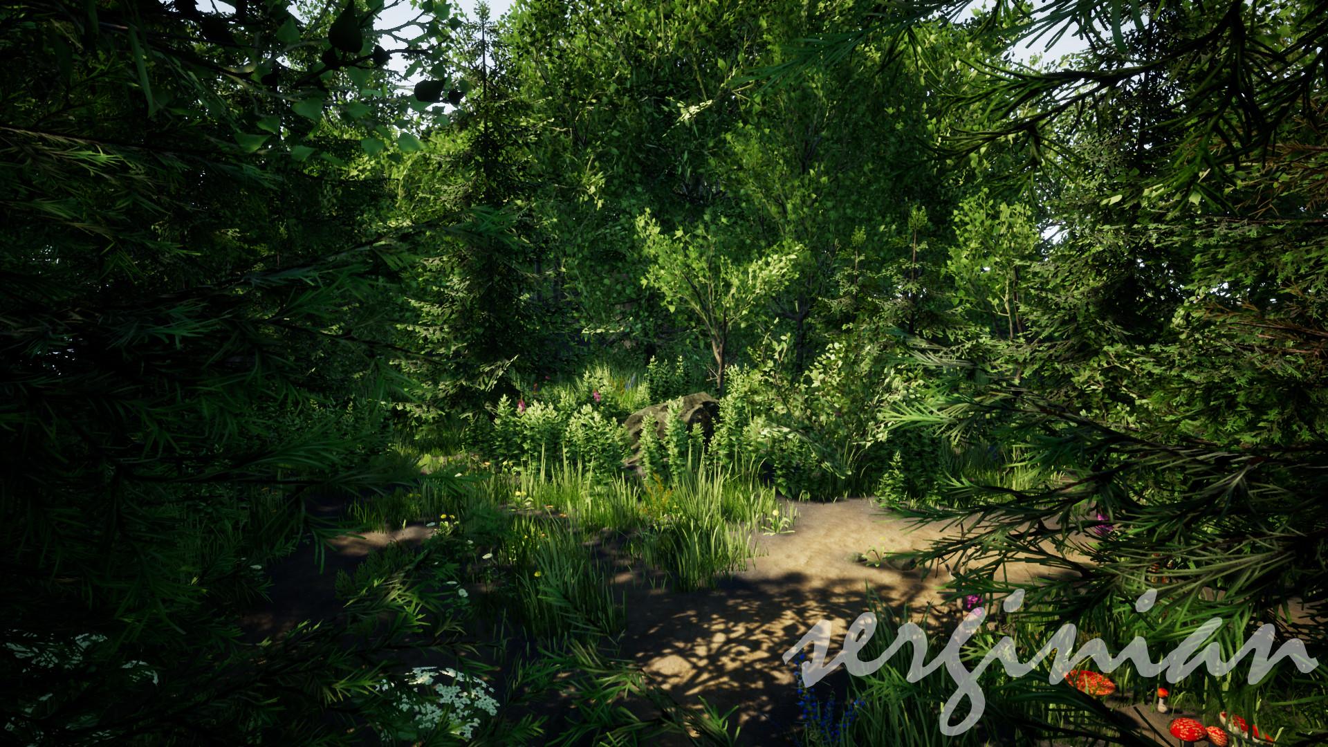 Sergei aparin forest 32 bit pcd3d sm5 02 01 2018 11 22 54
