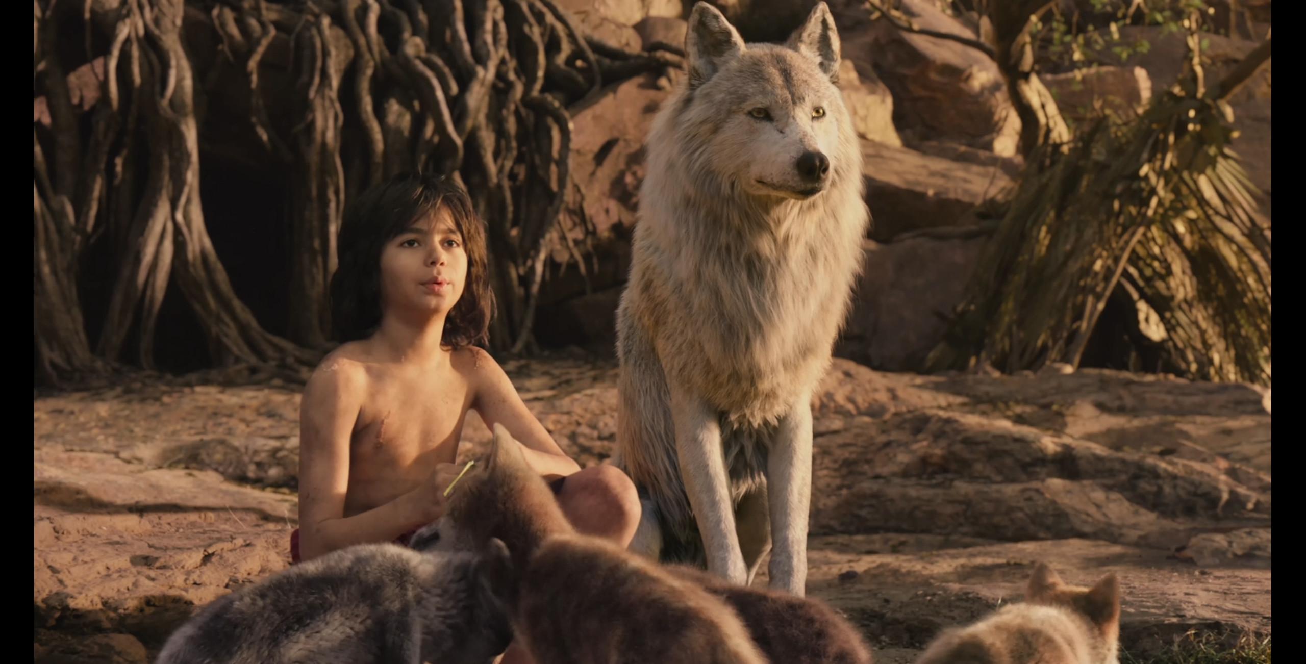 Raksha's fur