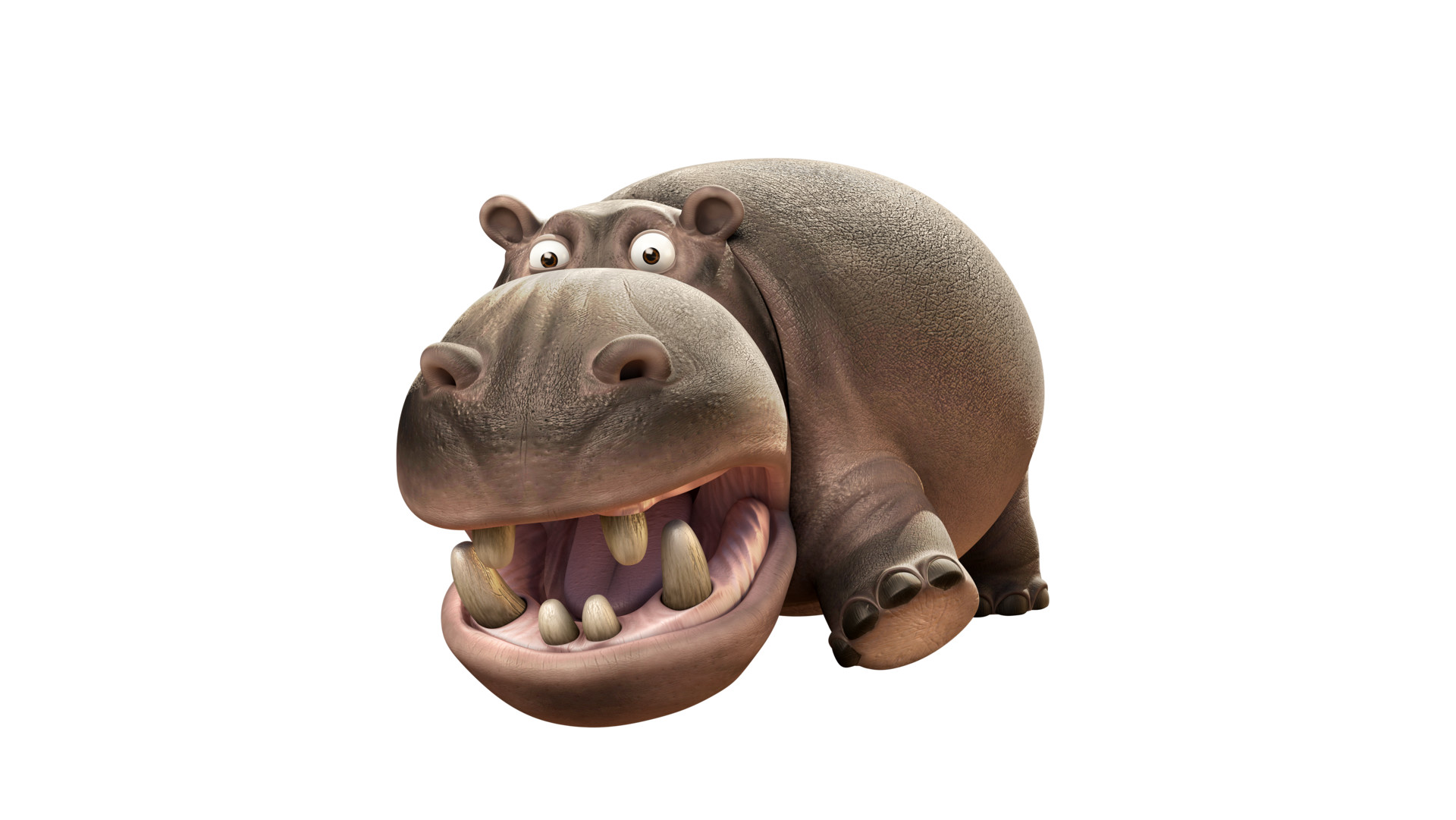 Duc phil nguyen hippo attitude 79