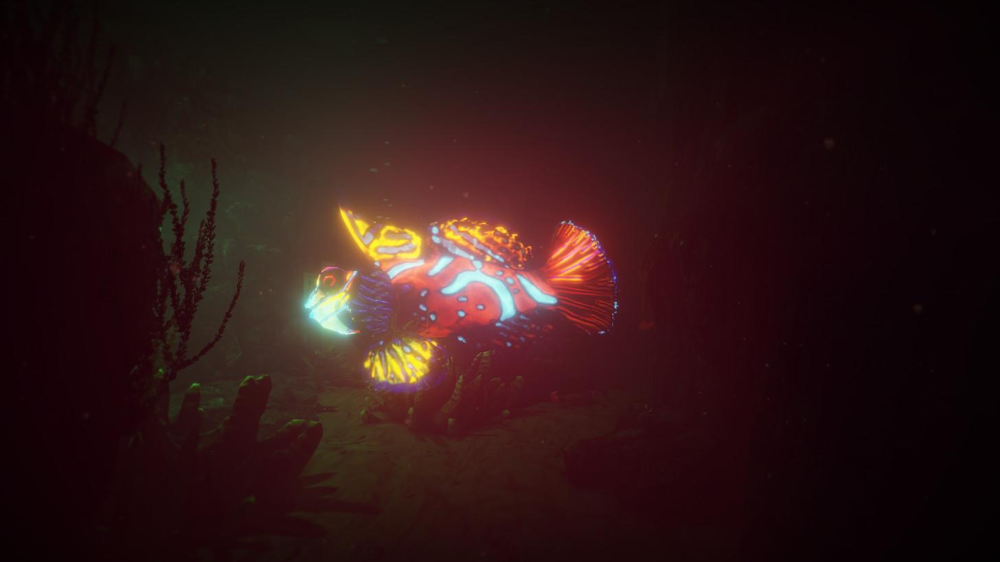 neonish mandarin fish