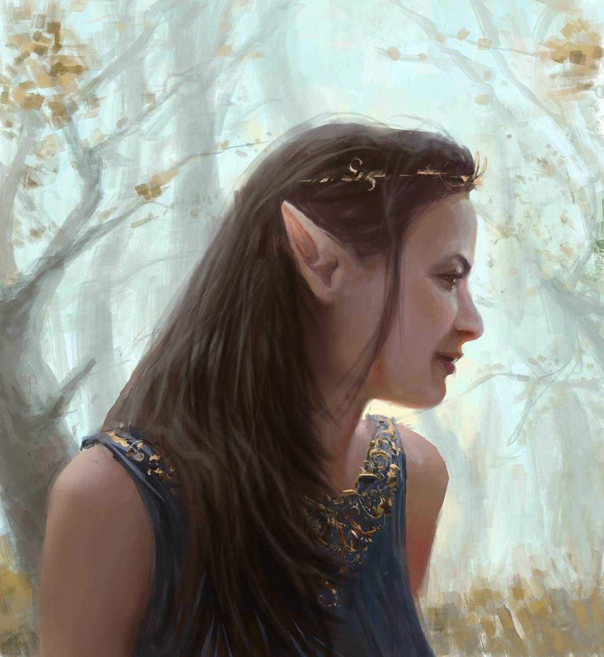 Artur mosca elfie f