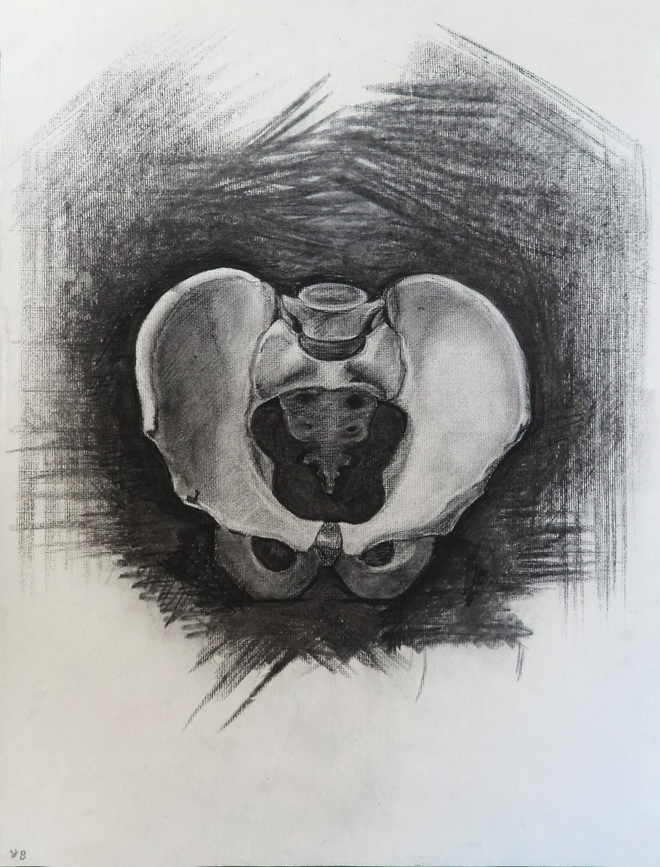 Vitaliy burov pelvis