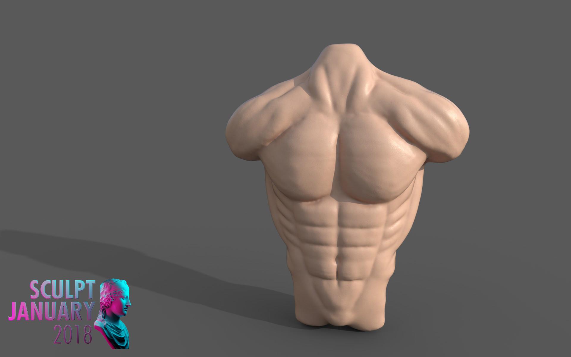 Matej chalachan torso male2