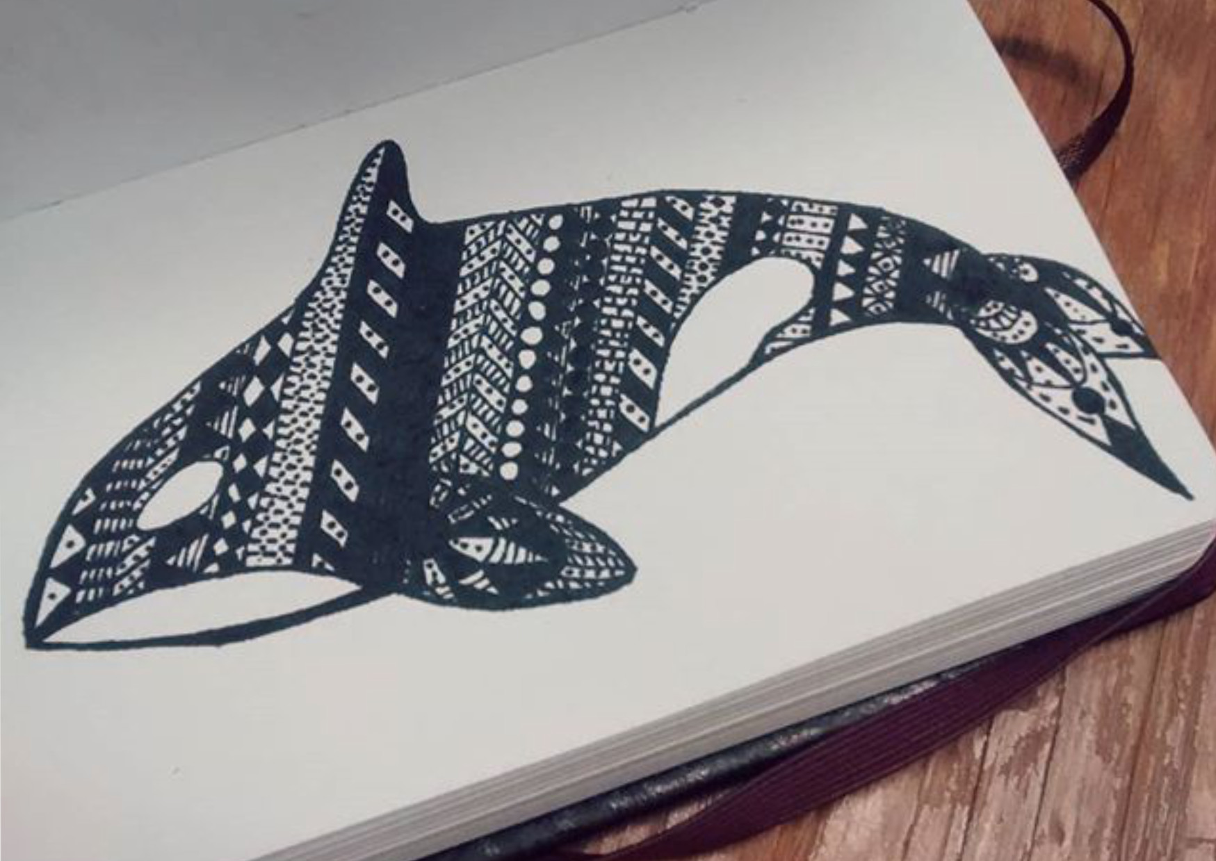 Jessica olney patterned whale rough sketch