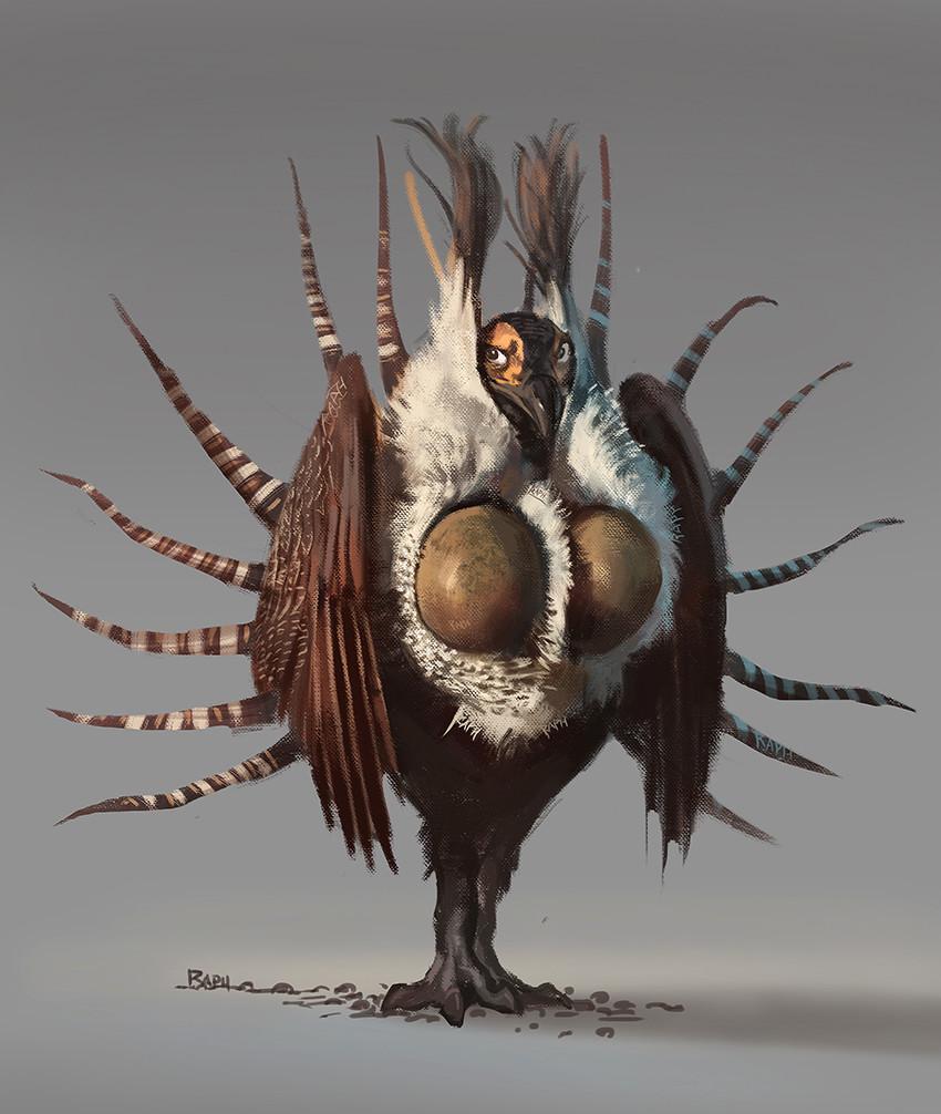 Raph lomotan kingcockatits