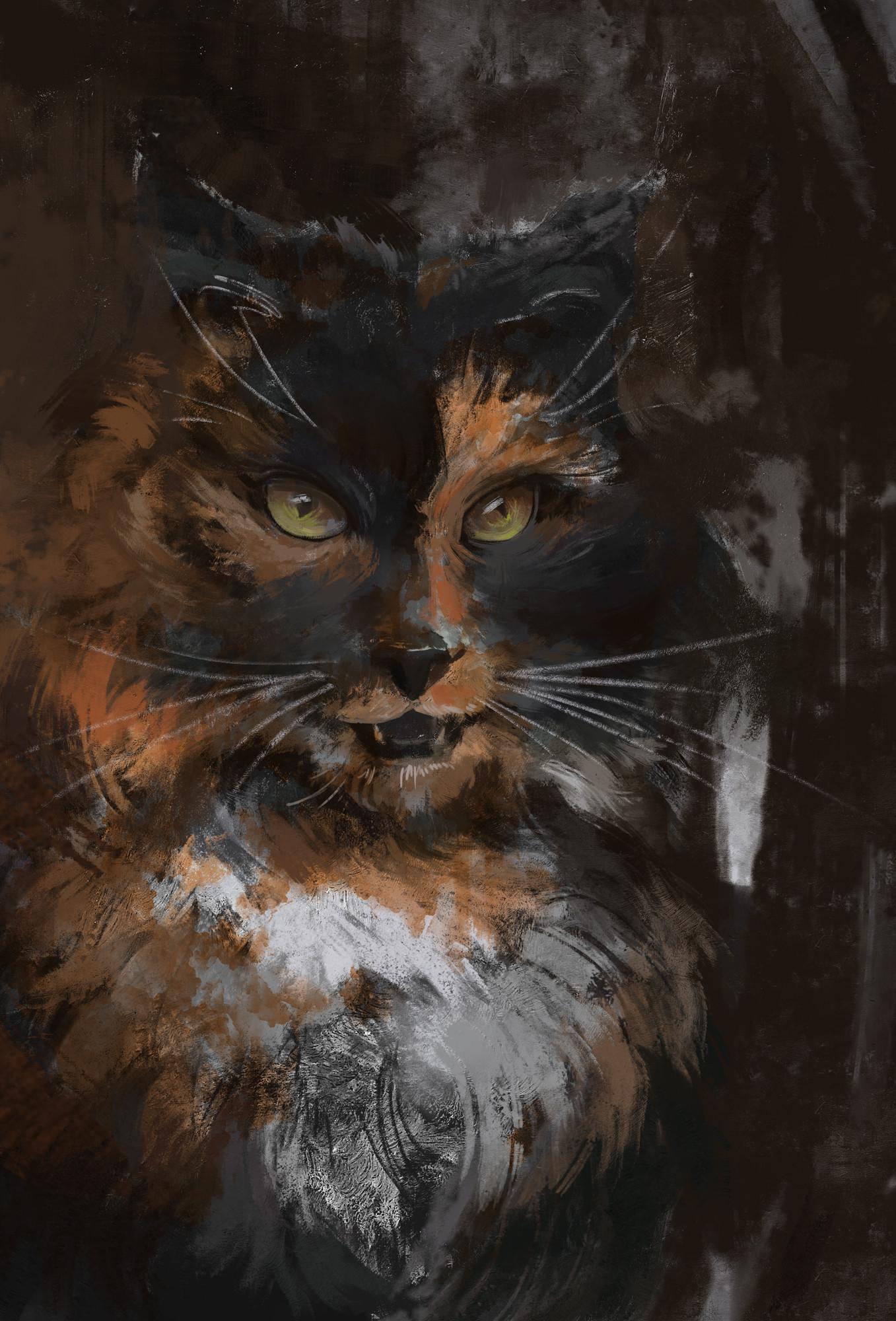 Casey gustafson crunchycat