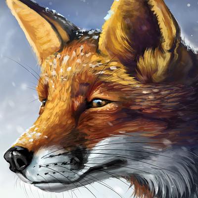 Den ovsyannikov fox huion h960p