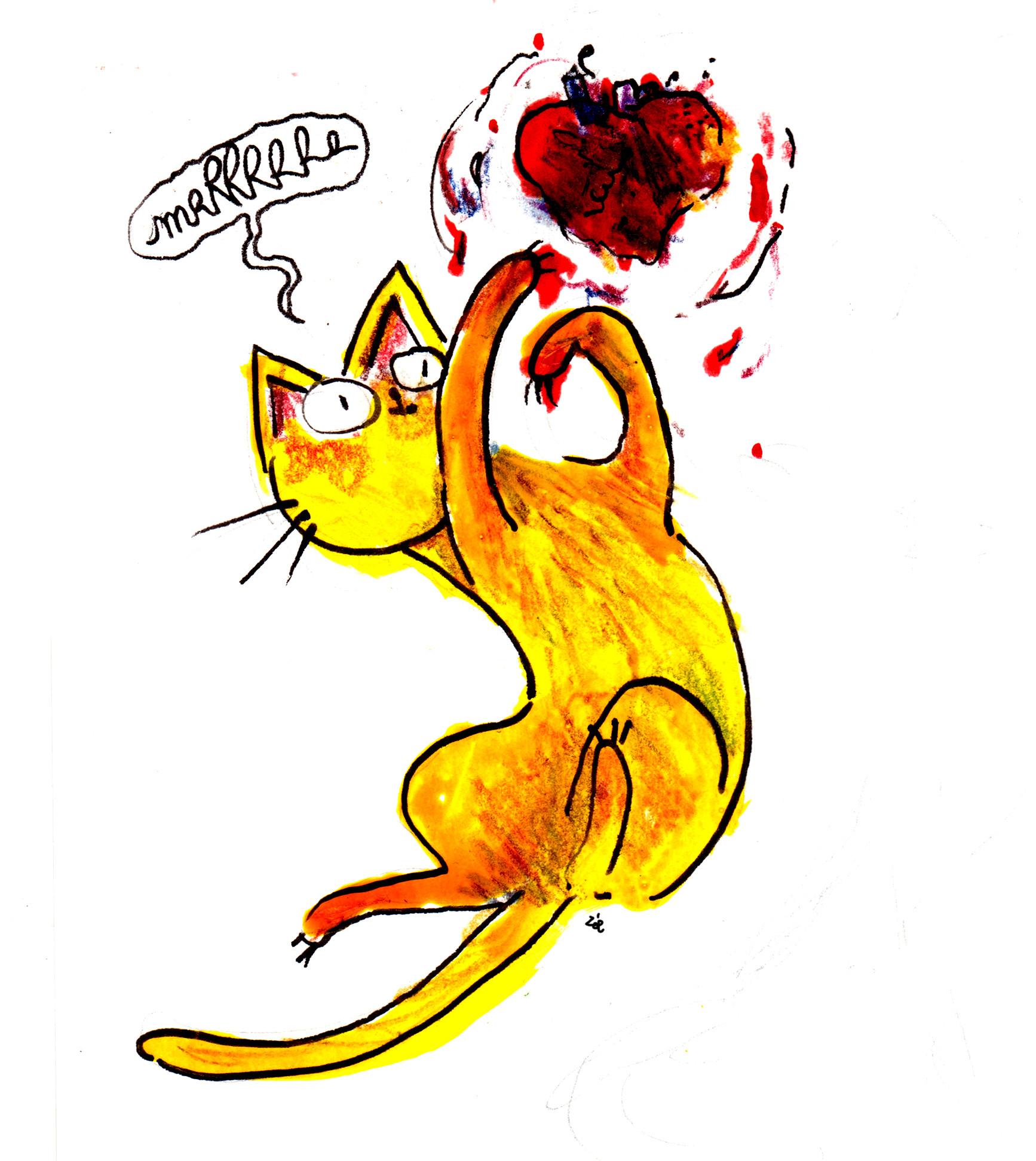 Zoe bergeret chat et coeur