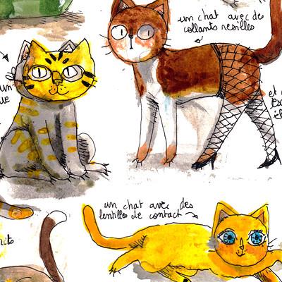 Des chats
