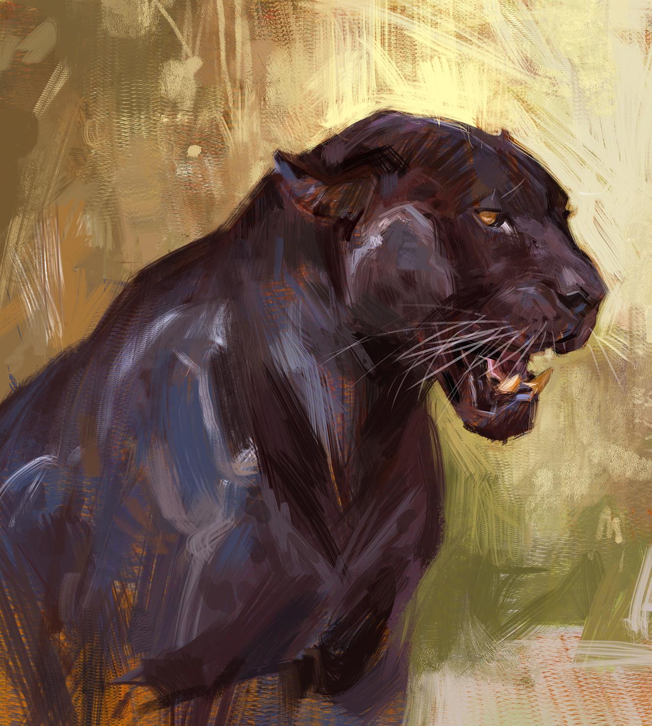 Jon kuo black jaguar
