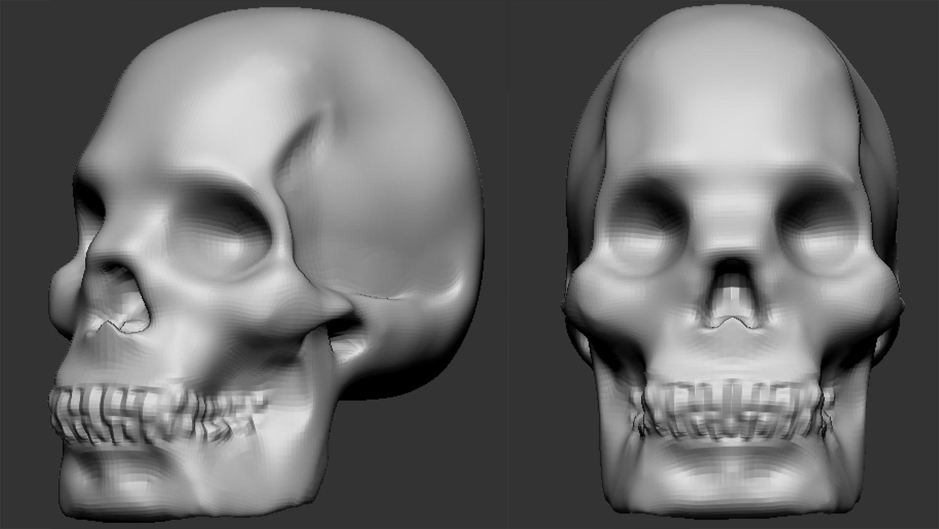 Sheryl zentz skull