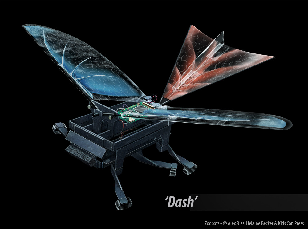 Dash was built to explore wing assisted locomotion in cockroaches