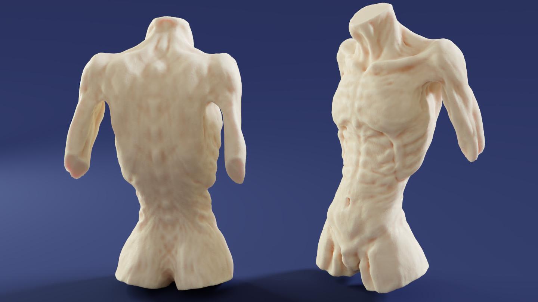 Mark van cooten torso2
