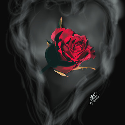 Andre smith valentine s day rose1